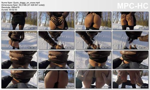 https://ist6-2.filesor.com/pimpandhost.com/1/4/8/5/148562/8/P/p/a/8Ppak/Quick_doggy_on_snow.mp4_thumbs_2020.01.17_21.13.16_m.jpg