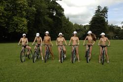 [Image: bicyclevip01094_s.jpg]