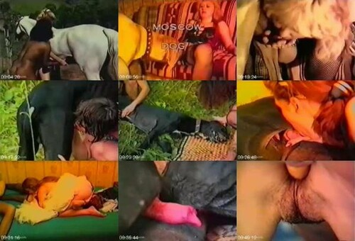 0595 HmZ Compilation of Russian Horse and Dog Sex m - Compilation of Russian Horse and Dog Sex / Amateur ZooSex
