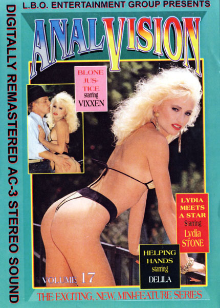Anal Vision 17 (1993)