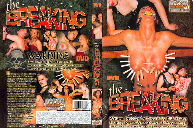 The Breaking (2020 | SD) (925 MB)