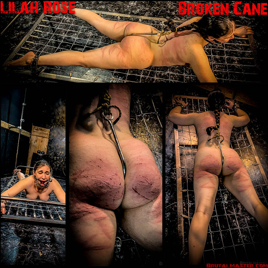 BrutalMaster - Lilah Rose - Naked Woman Fucked and Beaten (2020/FullHD/399 MB)