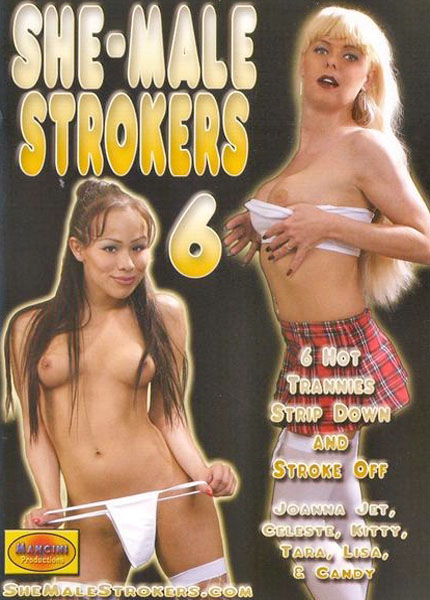 She Male Strokers 6 (2004)