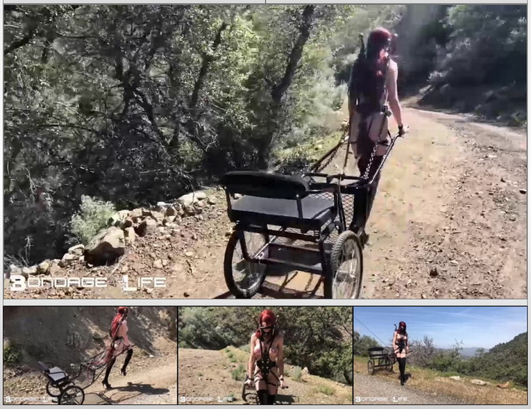 Pony Cart Walk (2020 | HD) (792 MB)