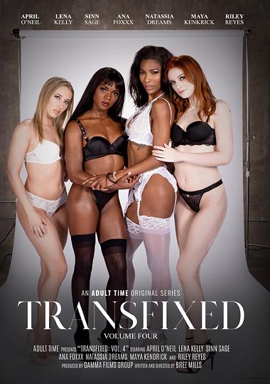 Transfixed 4 (2019)