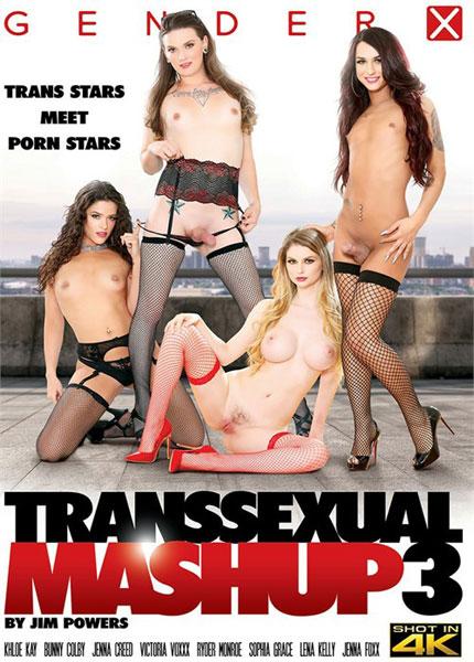 Transsexual Mashup 3 (2019)