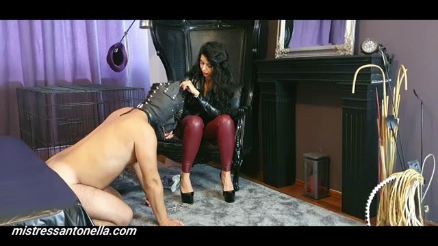 MistressAntonellaSilicone - Mistress Antonella gives her own supreme caviar