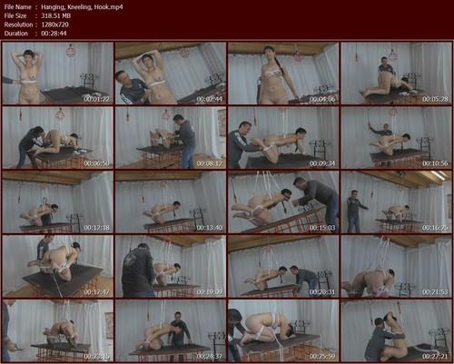 Hanging-Kneeling-Hook.t_m.jpg
