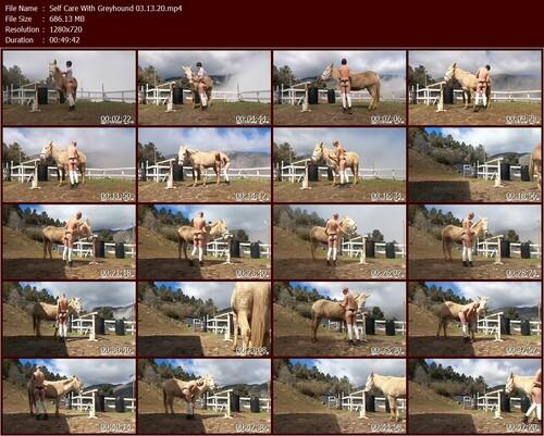 Self-Care-With-Greyhound-03.13.20.t_m.jpg