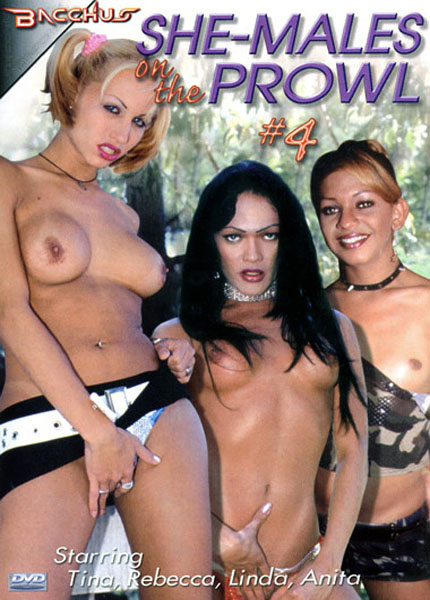 She-Males on the Prowl 4 (2007)