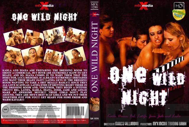 MFX-Media - One Wild Night