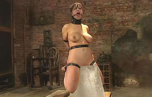 Insex---2004.01.07---Iced-Elizabeth-912_m.jpg