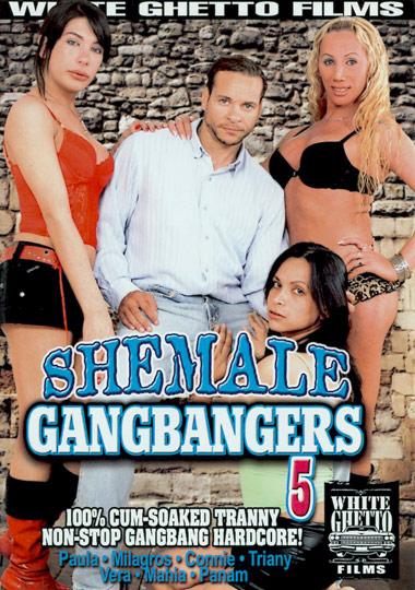 Shemale Gangbangers 5 (2008)