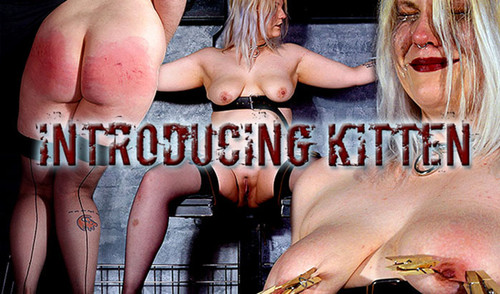 ShS-Slave-Kitten---Introducing-Kitten_m.jpg