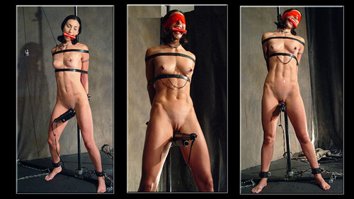 Wenona-Orgasm-Pole-By-David-Mack_m.jpg