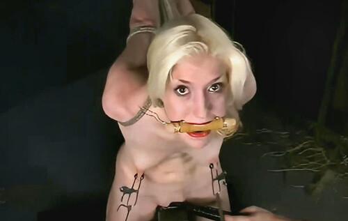 Insex---2002.11.09---CowCross-Cowgirl_m.jpg