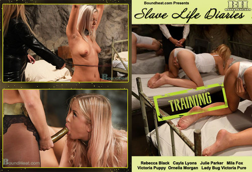 Slave-Life-Diaries---Training_m.jpg