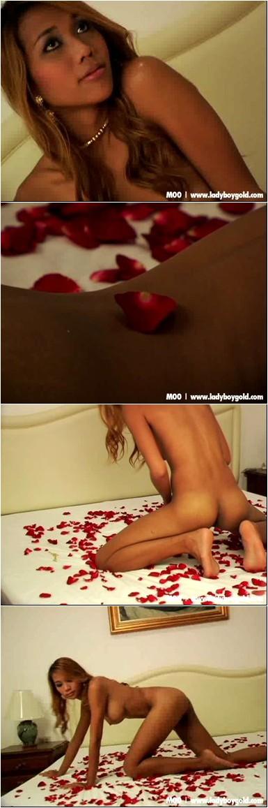 [Image: _Moo_-_Bed_Of_Roses.wmv.e.jpg]
