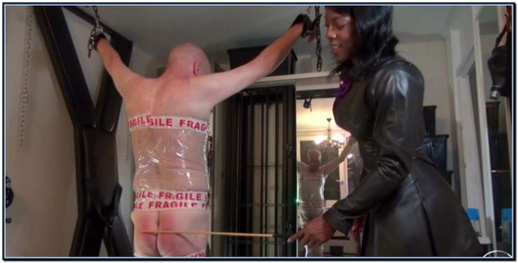 Kianas Fragile Cp Slave Femdom