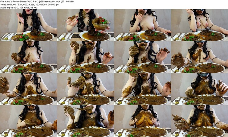 anna's Private Dinner Vol 2 Part2 [x265 Reencode] (mp4, 1080p, 671.08 Mb)