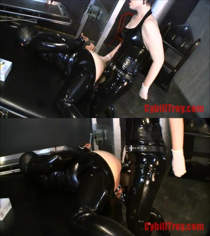 Femdom Only New Releases