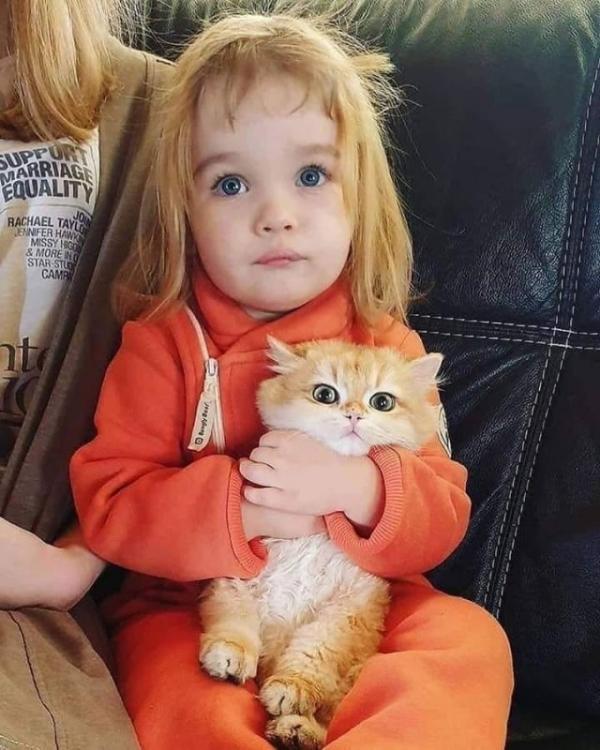 c-cute,