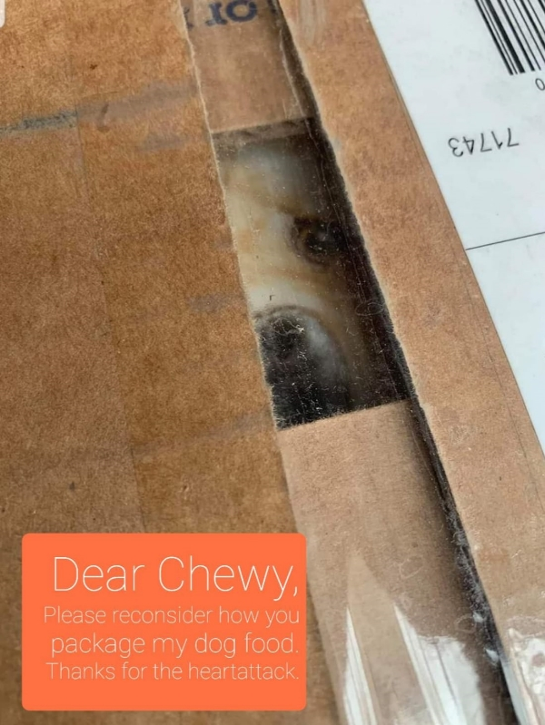 Chewy,