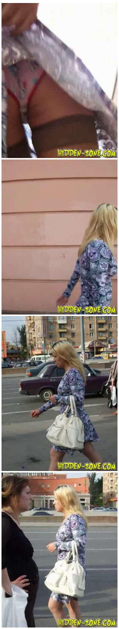[Image: Hidden-Zone_Upskirt760_cover.jpg]